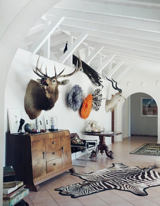 elk, gazelle and peacock taxidermy, plus zebra skin rug